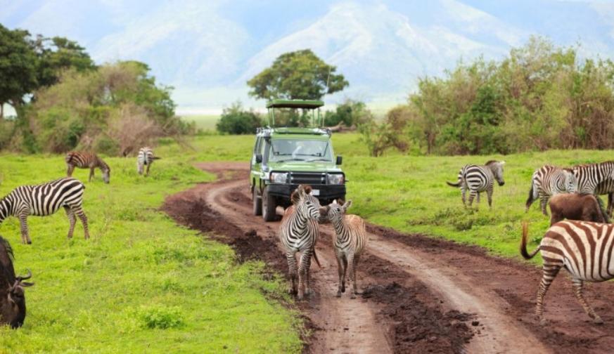 Arusha Serengeti 4 Days Tour